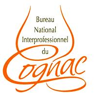 BNIC logo